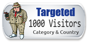 1,000 Targeted Visitors + 1,500 FREE Today Only!!